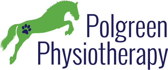 Pologreen Physiotheraphy